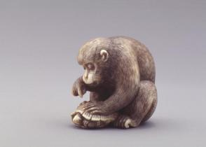 Model of a Seated Monkey Poking at a Turtle