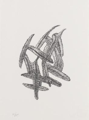 Untitled (Feathers-Black)